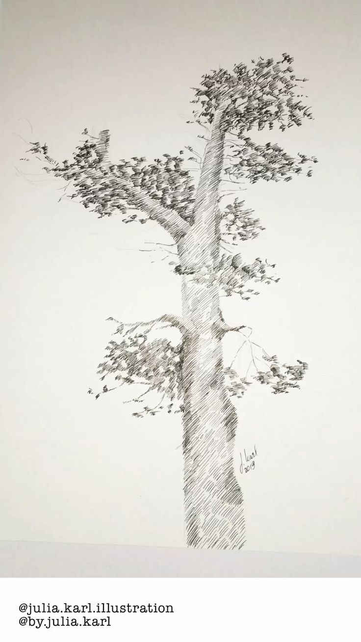 How to draw a tree only using lines.Ink Illustration. #art #drawing #ink #illust… – Gearloose
