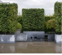 Domani is proudly featured at www.gibraltarfurniture.com. Domani showcases pottery in various conceputual designs and space age materials. Domani features hardy planters in zinc, terracotta pots with special patina, or decorative vases in traditional raku method.