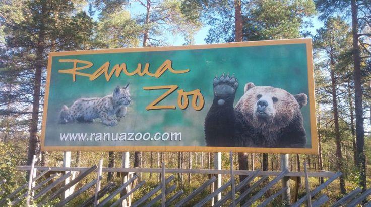 Ranua Zoo -Lapland, Finland