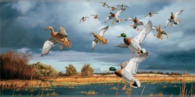 Pinterest the world s catalog of ideas for Duck hunting mural