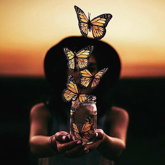 Butterfly Theme | Photo Manipulation in Adobe Photoshop CC ...