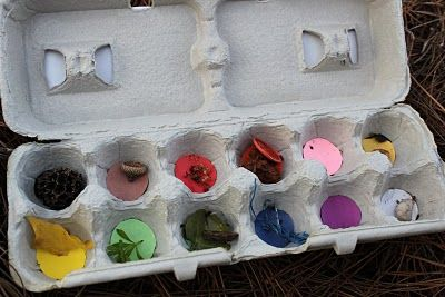 Upcycle an egg carton to use for a Color Treasure Hunt