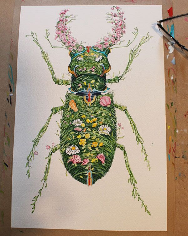 Stag Beetle Finished With The Flowers All In Place Hookers Green