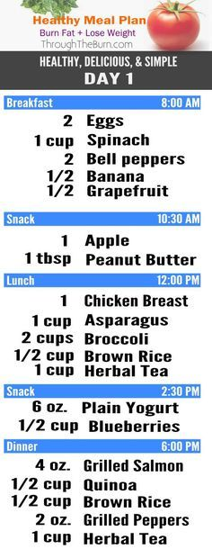 Healthy, Delicious Meal Plan - Burn Fat & Lose Weight! Don't worry about what you're going to eat and when, we'll take care of that for you!