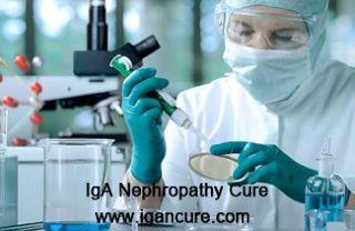 nefropatia por IgA: A Terapia com Células-Tronco está bem para o FSGS