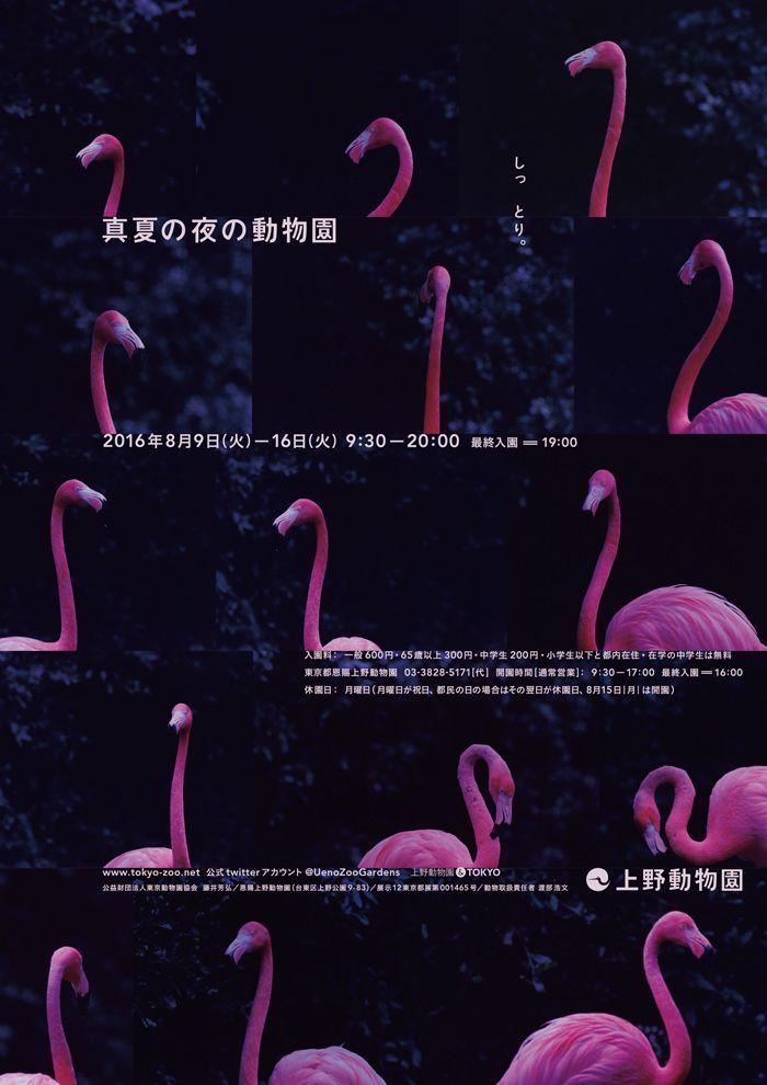 8/9-8/16 2016年「真夏の夜の動物園」   東京ズーネット
