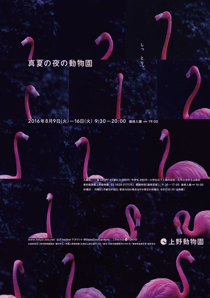 8/9-8/16 2016年「真夏の夜の動物園」 | 東京ズーネット