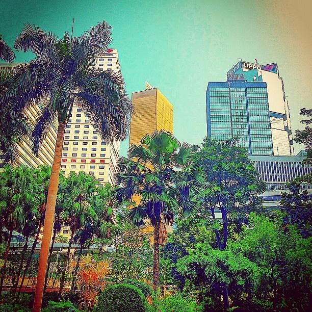 Hong Kong Central - @balazsroth- #webstagram
