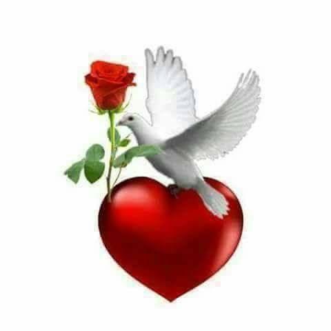 Ein schönes Symbol für Liebe...