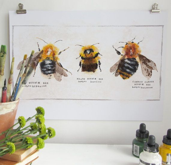 Scientific Bumble Bee Print