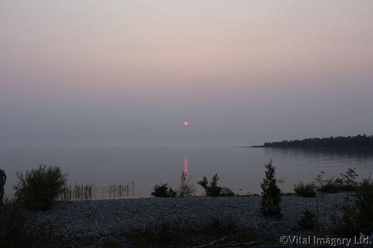 Misty Red Sun at Inverhuron Provincial Park