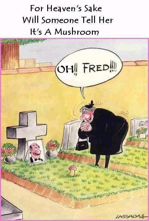 Mort de rire ! :)