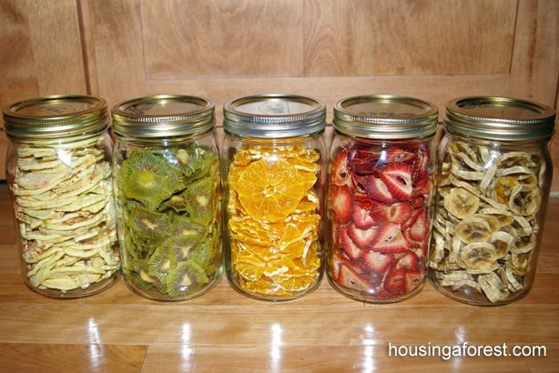 Healthy Dehydrated Fruits | The Homestead Survival