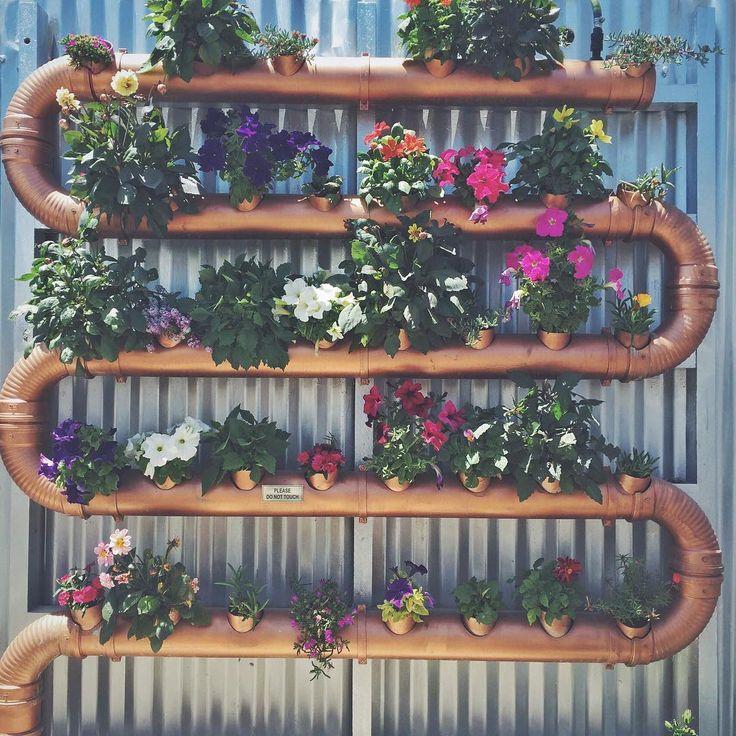 flowers, vertical garden, creative gardening, gardening