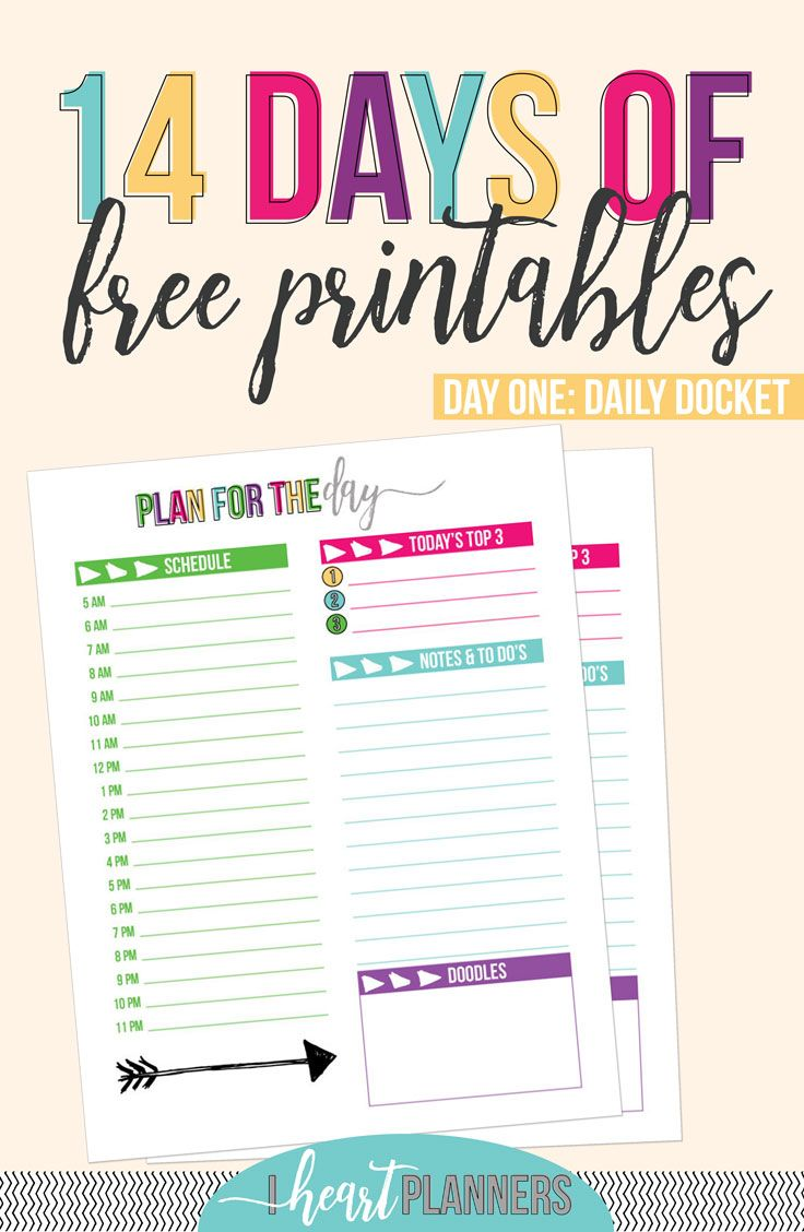 Daily Docket | Free Printable | Colorful Daily Planner | Planning Printable