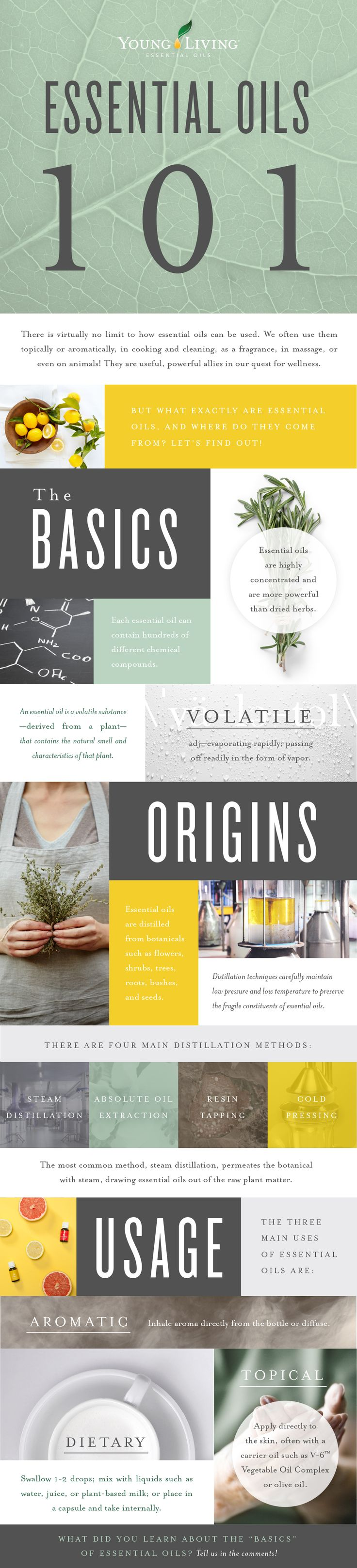 Essential Oils 101: The Basics