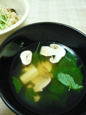 秋の味覚★松茸のお吸い物