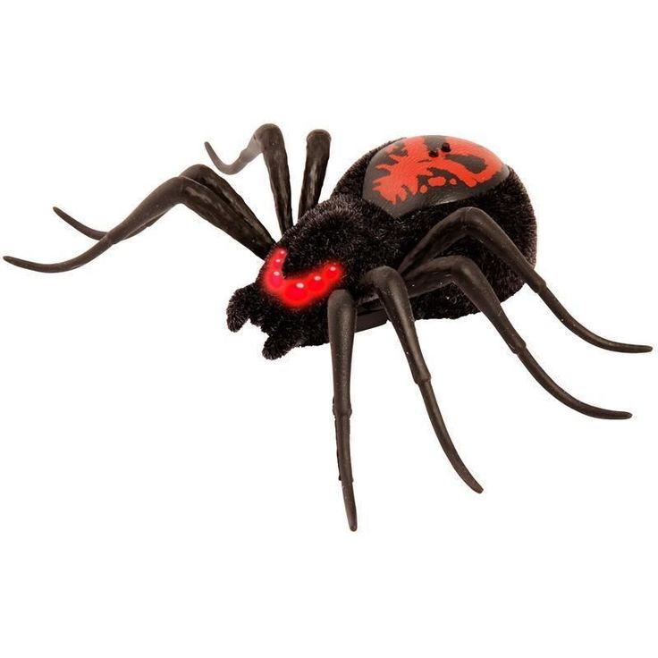 Wild Pets Toys Creepster Spider Wild Pets Creepster Spider. Feels and moves just like a real spider! With touch sensors so you control the behaviour of the spider! With LED light up eyes to indicate what mode your spider is in. http://www.MightGet.com/january-2017-13/wild-pets-toys-creepster-spider.asp