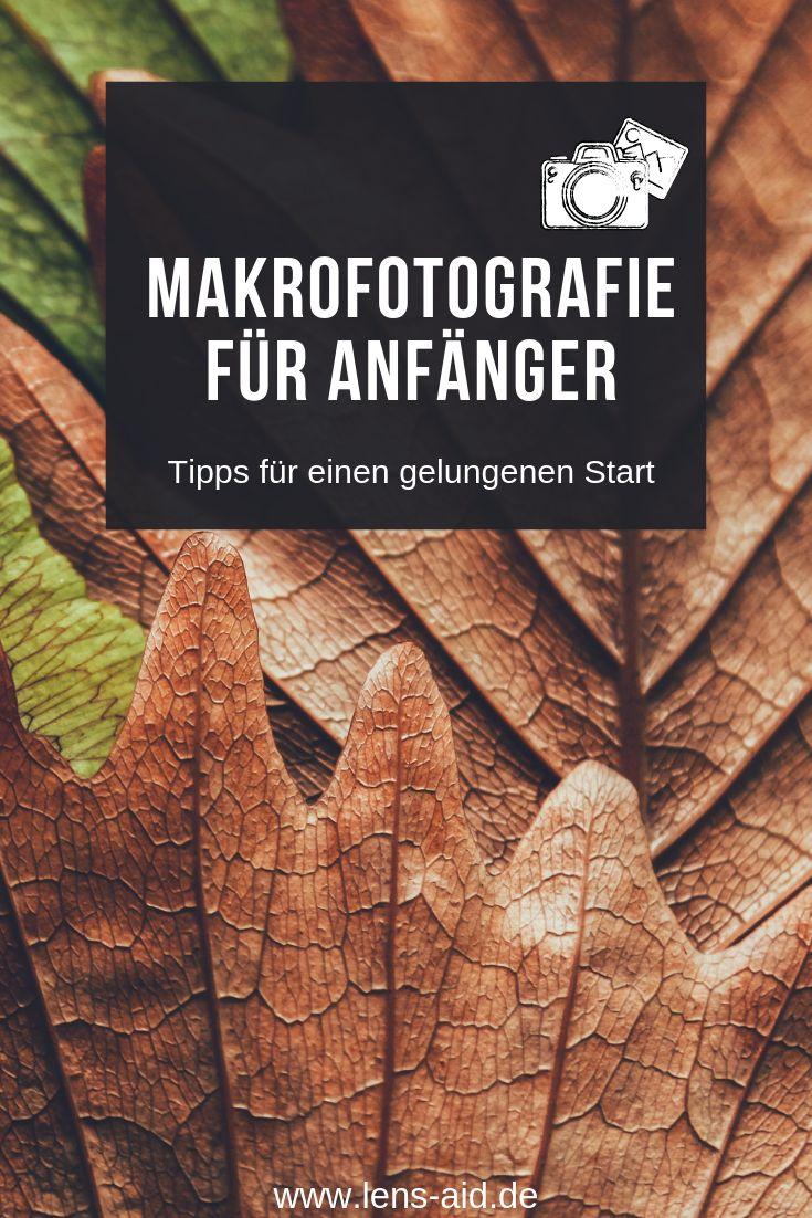 Makrofotografie ist ein besonders schönes Feld für Fotografen und Hobbyfotogra…