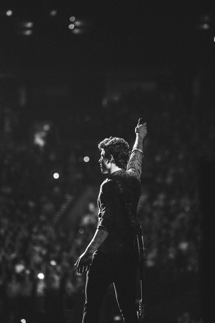 Obrigada por todas músicas lindas. Pela sua voz impecável e por todas as vezes que tocou meu coração  Shawn Mendes é incrível pessoal.