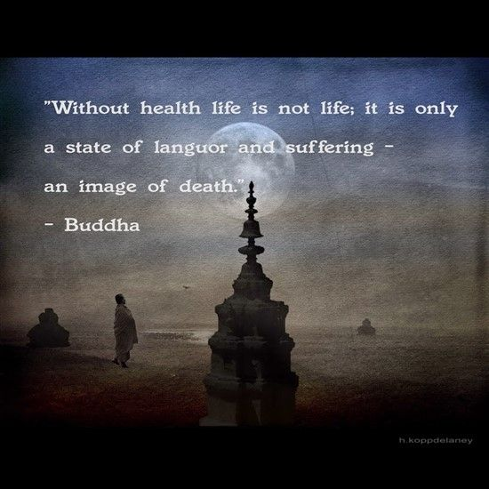 Buddha Family Quotes: 17 Best Best Buddha Quotes On Pinterest