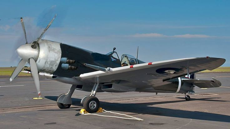 Its Bristol Hercules Version of Spitfire... ... Hercules is Famous Radial Engine but it did not enter service with single engine fighter... it powered famous Bristol beaufighter but in that application it accompanied with another herc... beau had 2 engines...