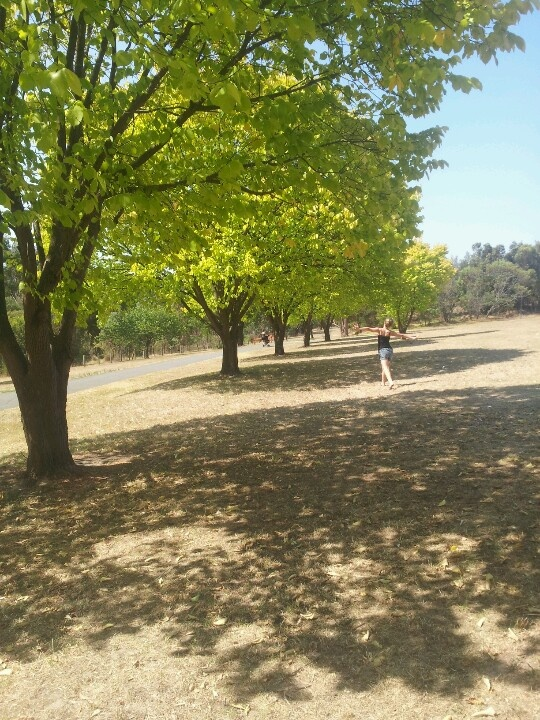 Edited version of ruffey lake park photo with tarny