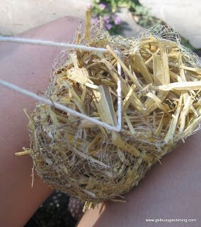 Use barley straw to Keeping Pond Water Clear the Natural Way