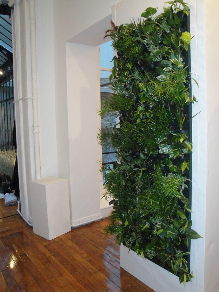 mur v g tal flowall avec plantes d 39 int rieur dans appartement x6 v g tal pinterest indoor. Black Bedroom Furniture Sets. Home Design Ideas