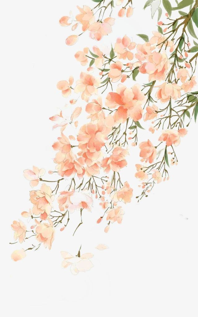 Trailing Orange Flowers Watercolor Illustration Watercolor