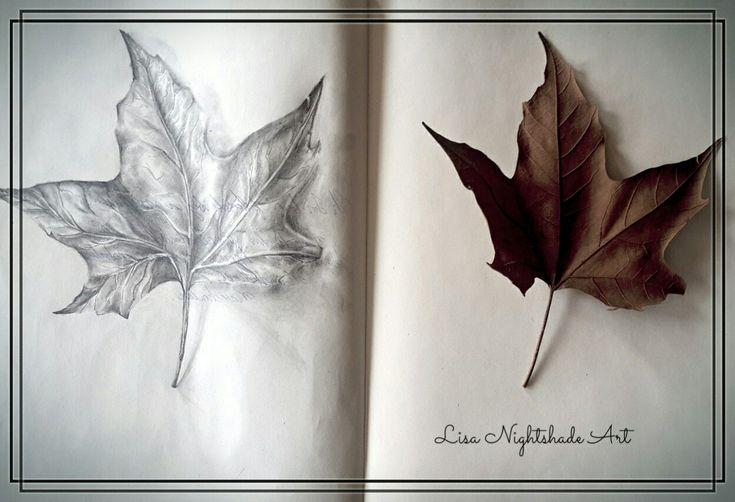 Leaf moleskine journal drawing