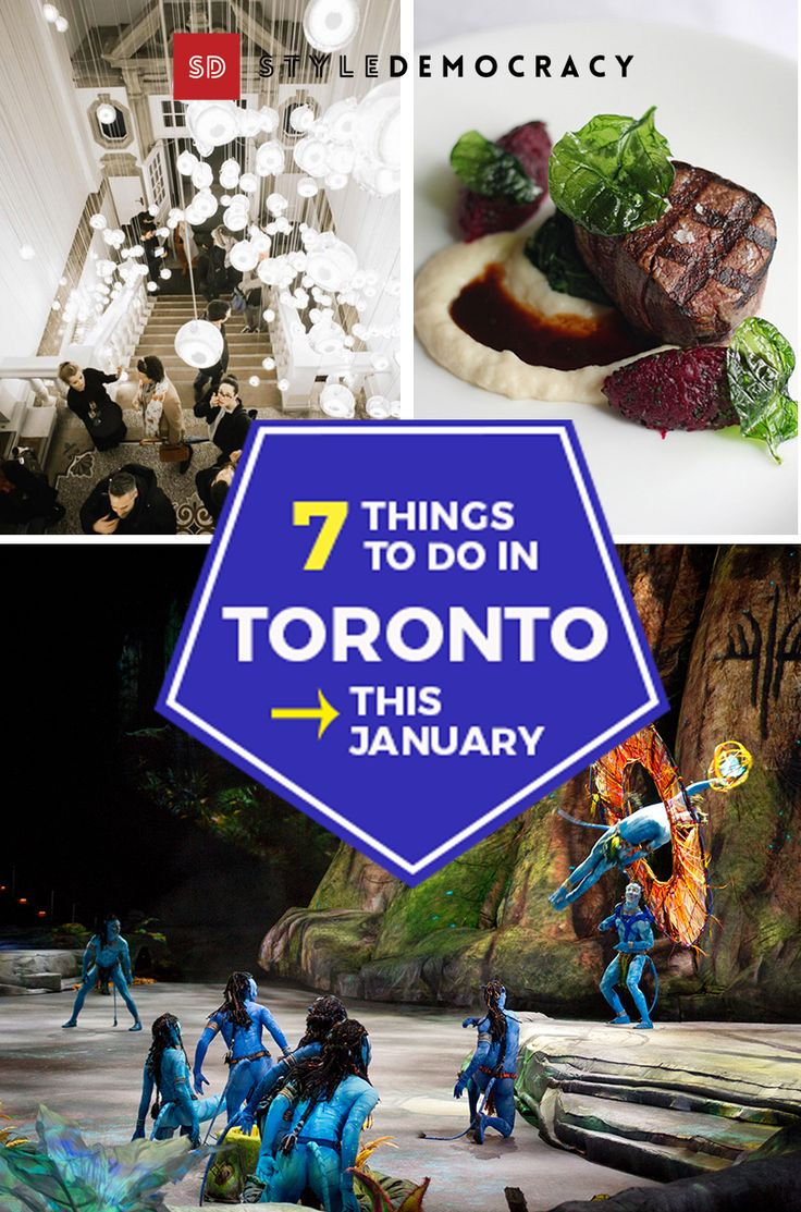 Cirque du Soleil is in town with their newest show inspired by Avatar, eat well with Winterlicious, get inspired at the Interior Design Show & more!