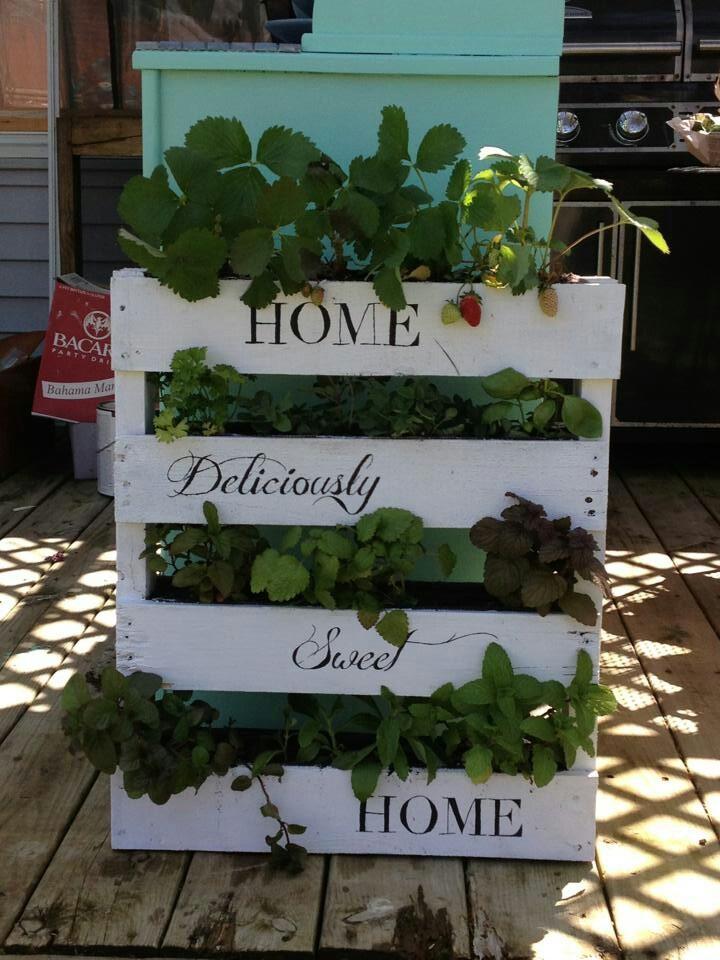 Pallet crafts pinterest gardens pallet herb gardens for Wood pallet herb garden