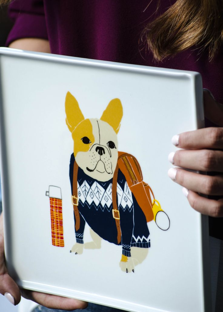 Claudia Pearson's dog plates are great for styling | west elm