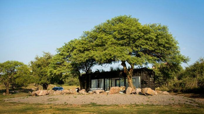 Residence in Argentina with two large trees above the structure that offer shade - CAANdesign | Architecture and home design blog