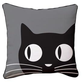 Chat noir !