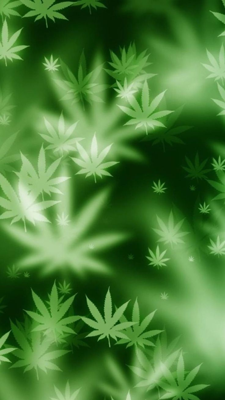 Best 25 weed backgrounds ideas on pinterest weed - Weed wallpaper ...