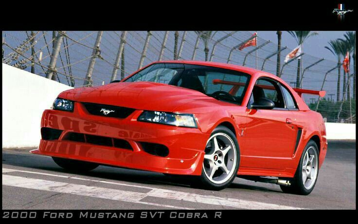 Pin by 🐺Wolford Howlington🐺💯🏁 on Ford/Shelby Mustang