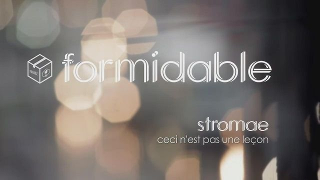 Stromae -Formidable