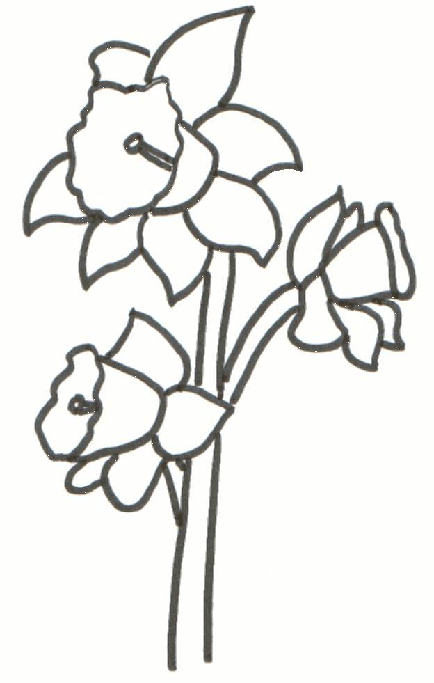 daffodil stamp - Recherche Google