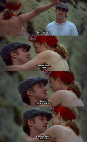 The Notebook. If you're a bird I'm a bird. #thestrangestyetmostromanticlineever