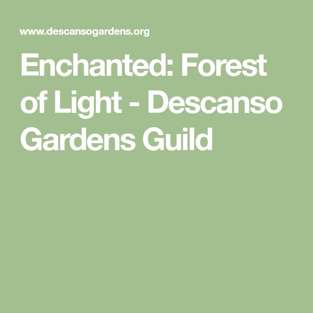 Enchanted: Forest of Light - Descanso Gardens Guild