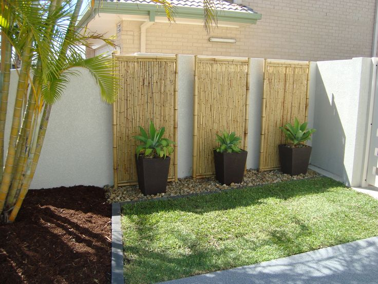 Bamboo Ideas For Backyard Backyard Landscape Design