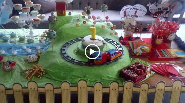 CAFEMORİN FARM THEME BIRTHDAY PARTY