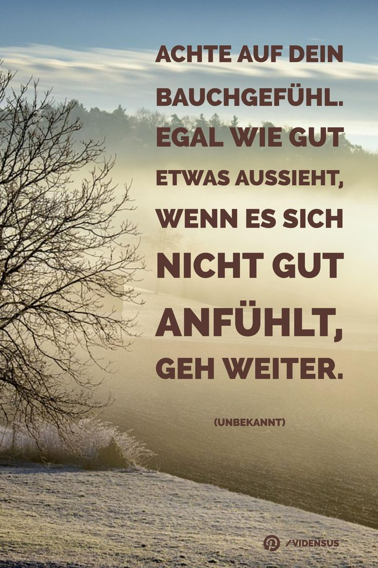 #zitate #sprüche #weisheiten #bauchgefühl – Aman Action