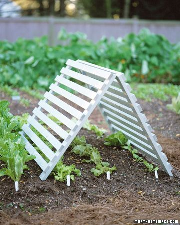 This airy shelter shields tender plants or seedlings from full sunlight until they're established.