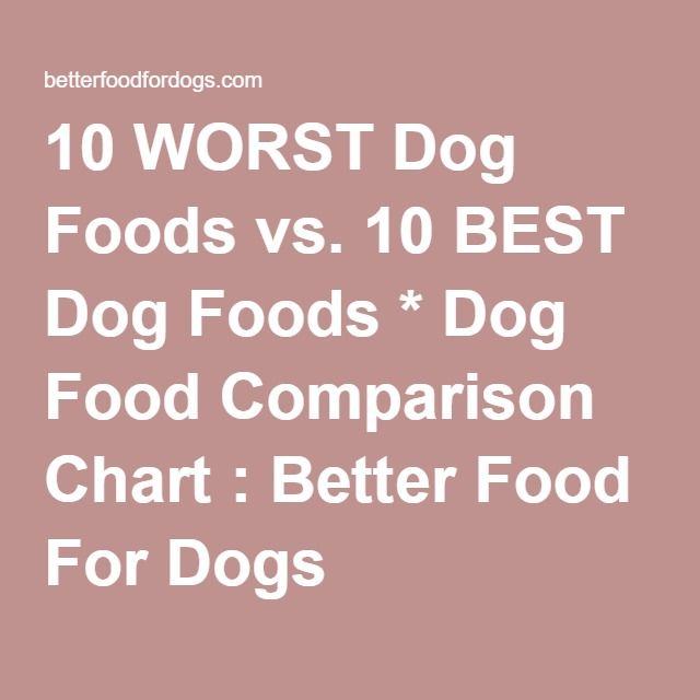 10 Worst Dog Foods Vs 10 Best Dog Foods Dog Food