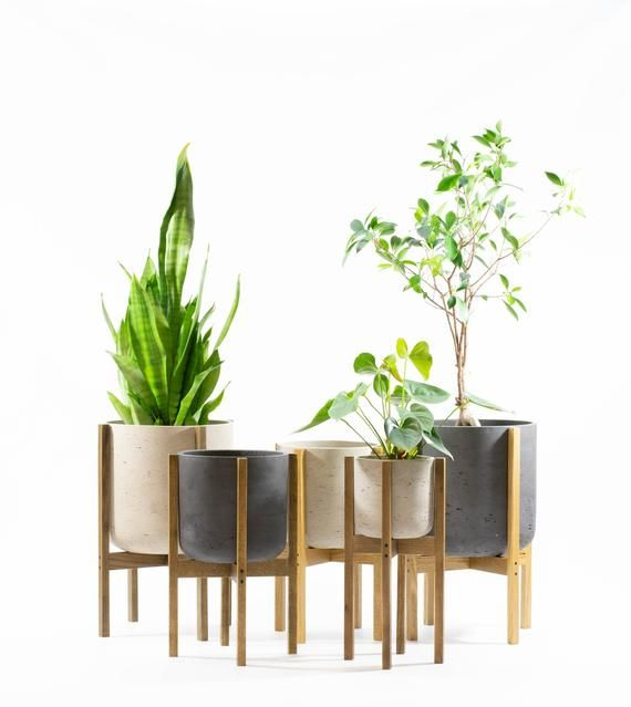 Concrete Planter With Wood Plant Stand Plant Stand With Etsy In 2020 Plant Stand Wood Plant Stand Large Indoor Planters