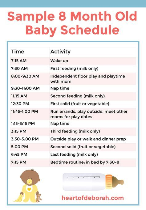Discover A New 8 Month Old Schedule For Your Baby Samples Included 8 Month Old Baby Baby Food Schedule Baby Food 8 Months