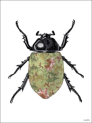 Poster VANILLA FLY - Colored beetle